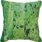 21294C Montgomery Cowhide - Green